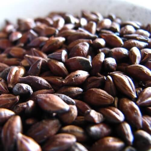 Темный солод Roasted Barley